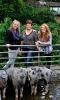 Bonte Bentheimer Farm Hoeve het Rondgors