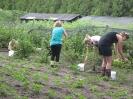 Zorgboerderij Hoeve het Rondgors